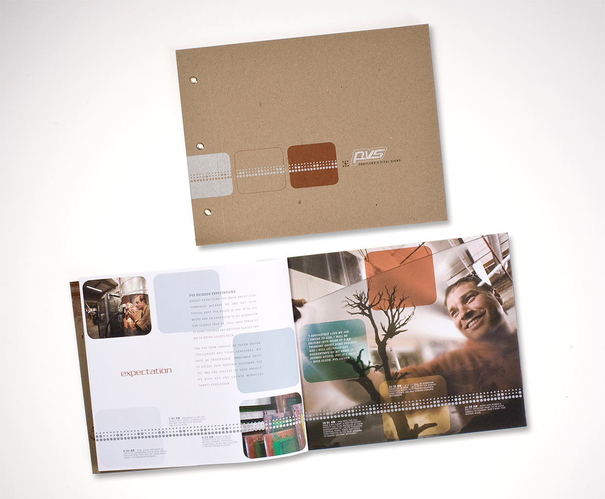Brand and brochure design showcasing PVS culture, talent and abilities.